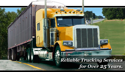 Bulk Transportation and Trucking Company with Dry Freight